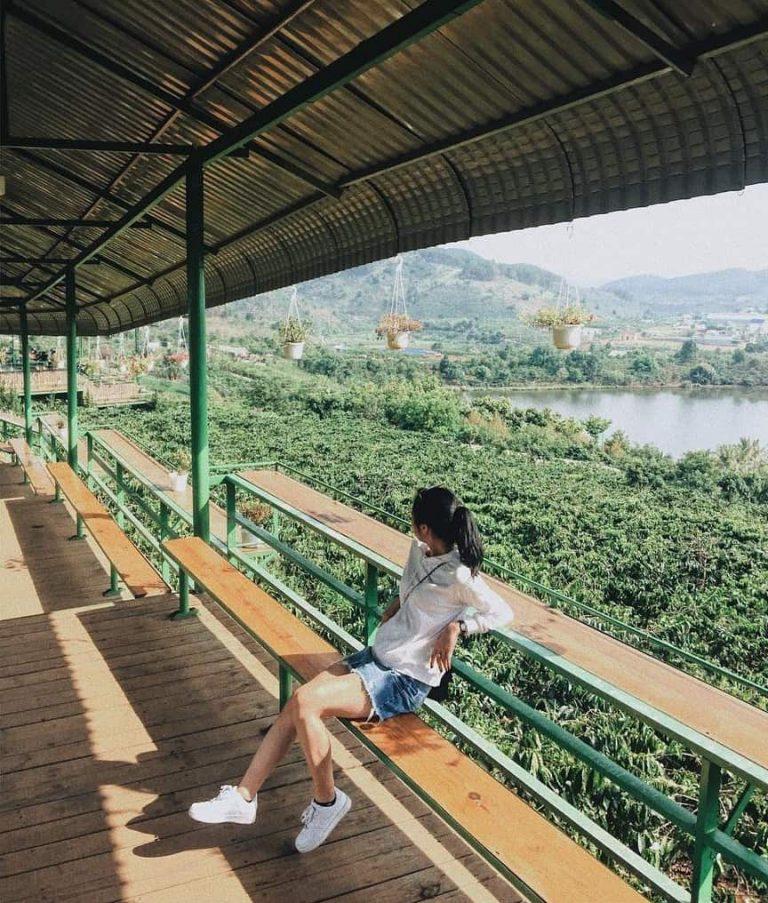 Hình ảnh cafe Mê Linh Đà Lạt