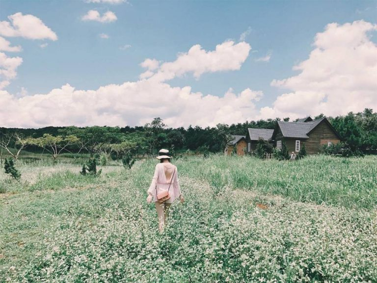 Đi tham quan Đà Lạt milk farm
