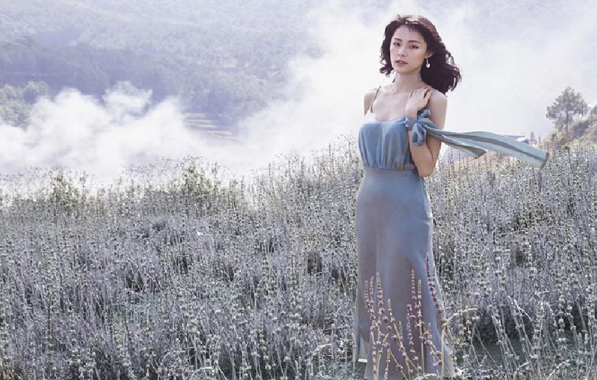 Vườn hoa Lavender Đà LạtVườn hoa Lavender Đà Lạt