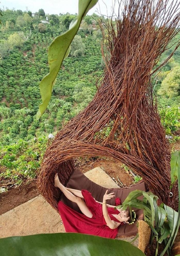 Tiểu cảnh tổ chim đan bằng các dây leo