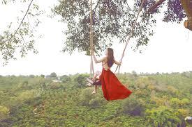 Xích đu trên cây
