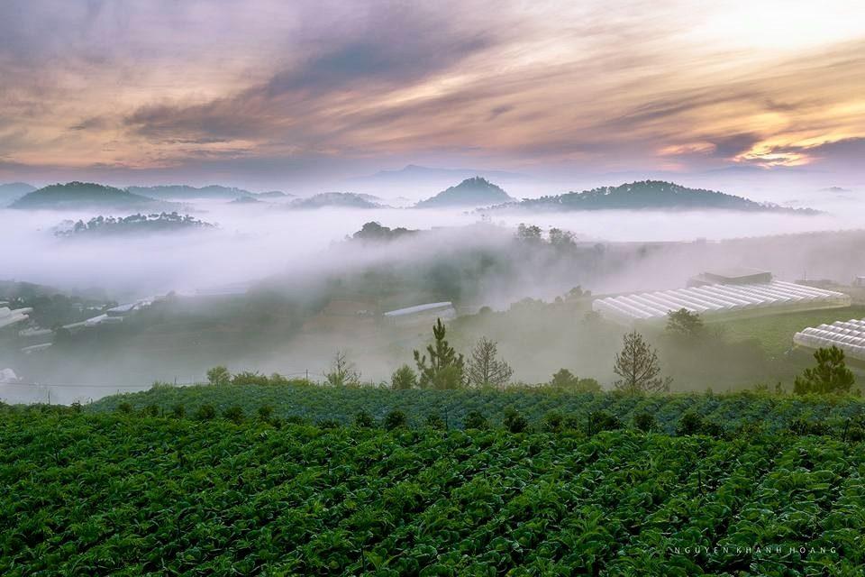 cảnh đẹp thiên nhiên Đà Lạt