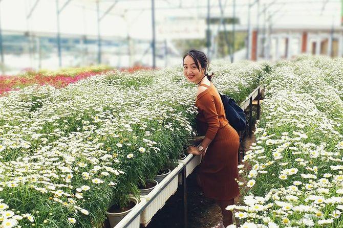 khám phá làng hoa vạn thành