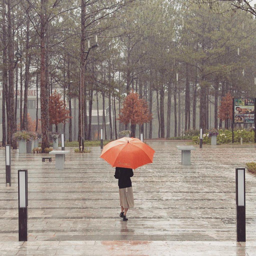 lãng mạn cơn mưa Đà Lạt