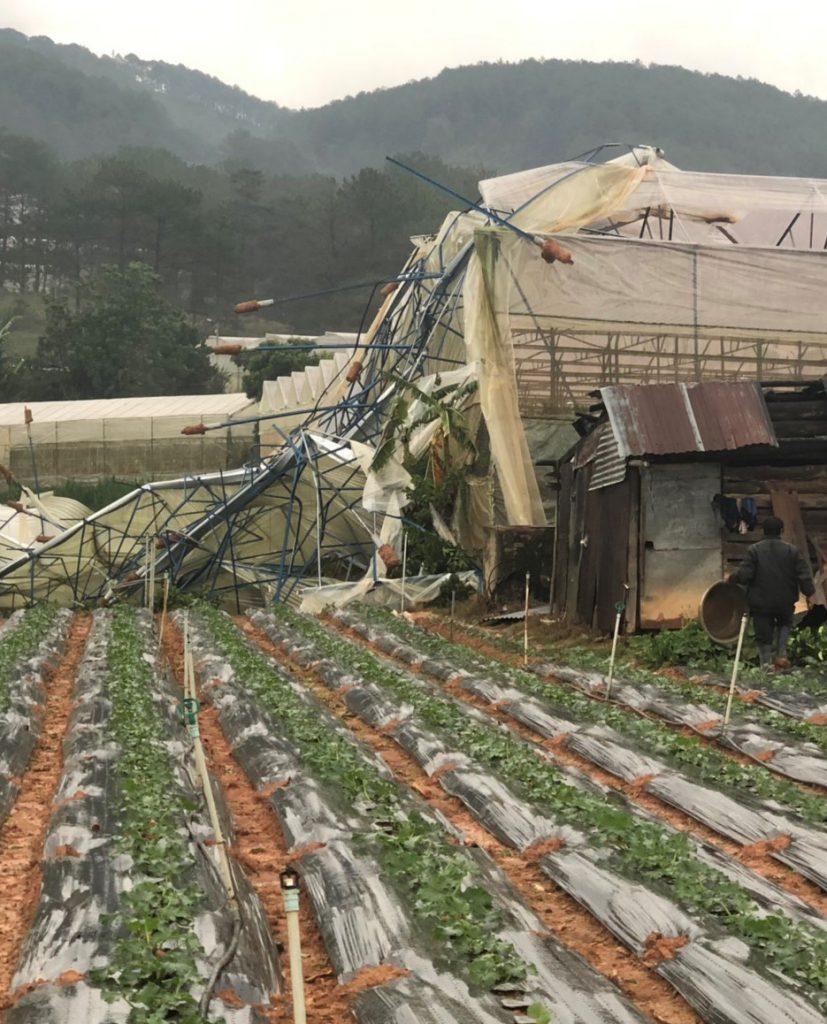 mưa đá lớn gây thiệt  hại